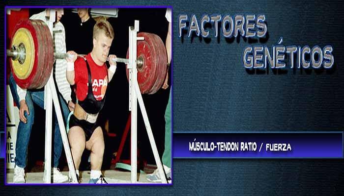 Factores de la Genética