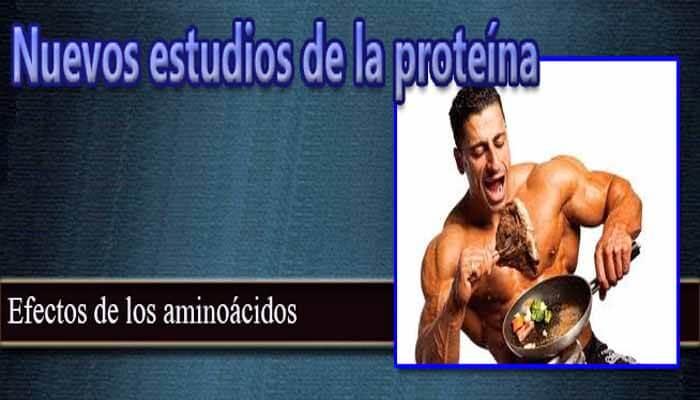 Nuevos estudios sobre las proteínas
